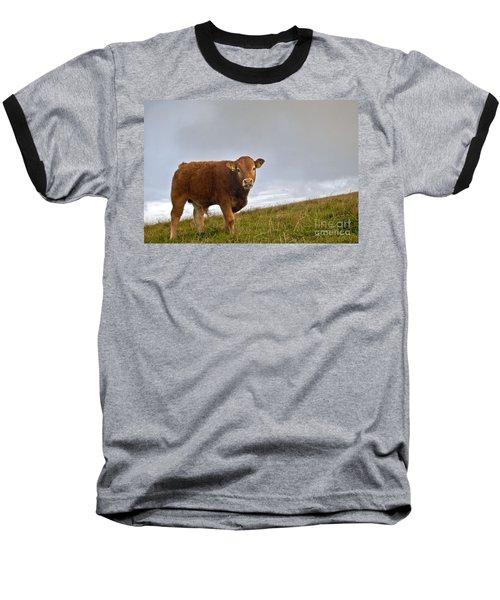 Cliffs Of Moher Brown Cow Baseball T-Shirt