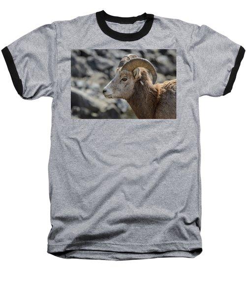 Close Big Horn Sheep  Baseball T-Shirt