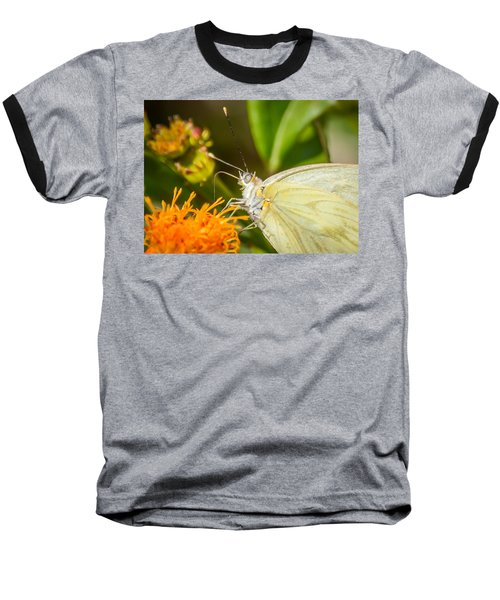 Baseball T-Shirt featuring the photograph Butterfly Attracted To Mexican Flame by Debra Martz