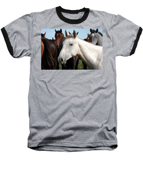 Close-up Herd Of Horses. Baseball T-Shirt