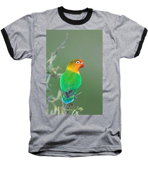 Close-up Of A Fischers Lovebird Baseball T-Shirt