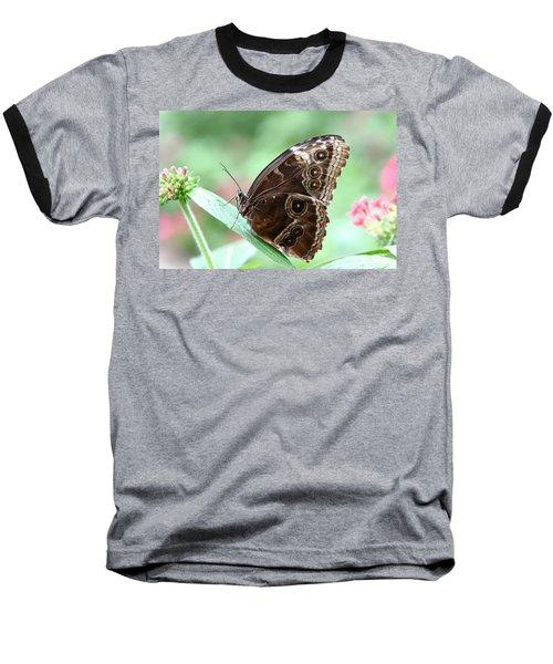 Closed Blue Morpho Baseball T-Shirt