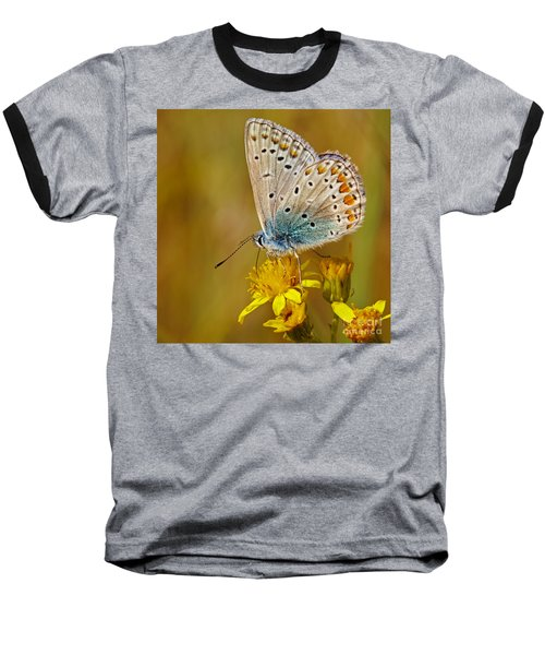Closeup Of A Common Blue Butterfly Baseball T-Shirt