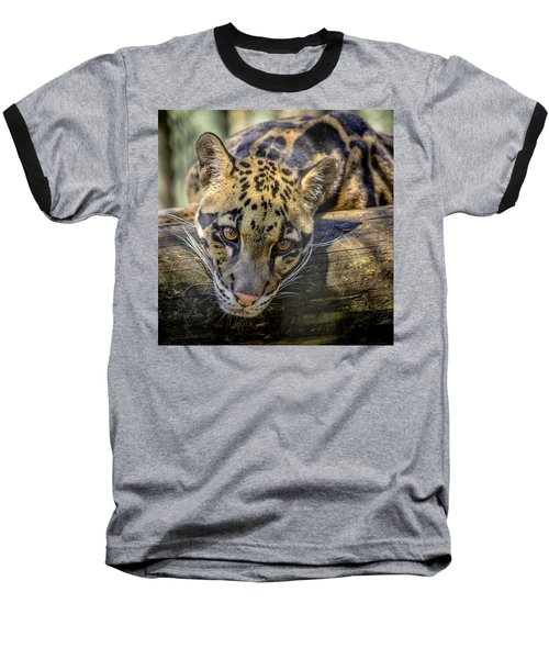 Baseball T-Shirt featuring the photograph Clouded Leopard by Steven Sparks