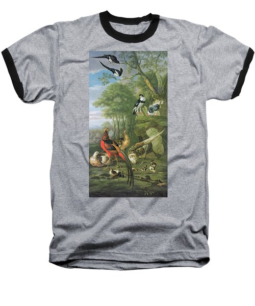 Cock Pheasant Hen Pheasant And Chicks And Other Birds In A Classical Landscape Baseball T-Shirt by Pieter Casteels