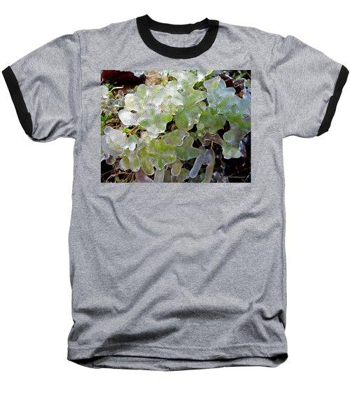 Cold Morning  Baseball T-Shirt