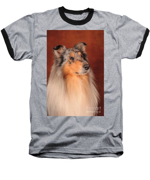 Baseball T-Shirt featuring the photograph Collie Portrait by Randi Grace Nilsberg