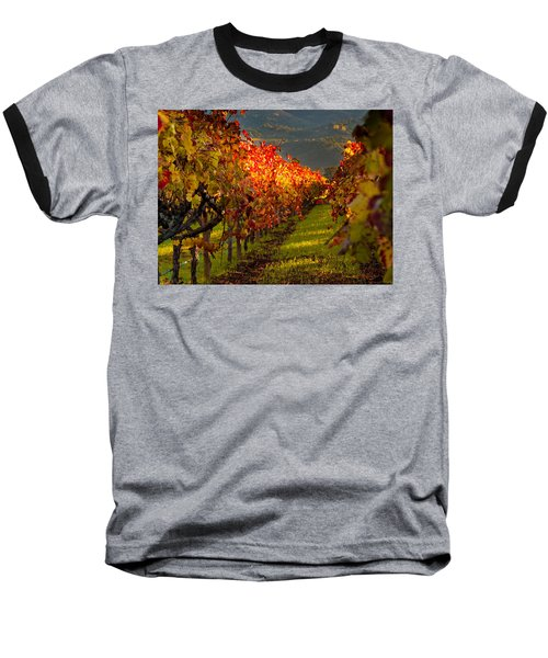 Color On The Vine Baseball T-Shirt by Bill Gallagher