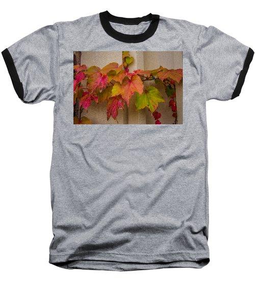 Colorful Ivy Baseball T-Shirt