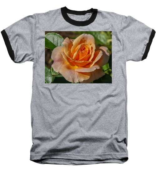 Colorful Rose Baseball T-Shirt by Jane Luxton