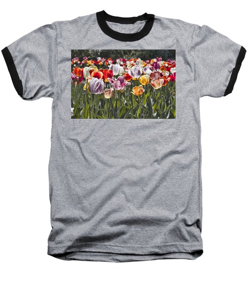 Colorful Tulips In The Sun Baseball T-Shirt