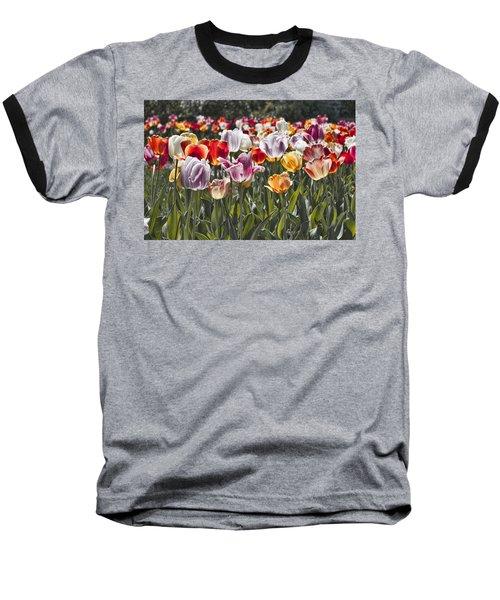 Colorful Tulips In The Sun Baseball T-Shirt