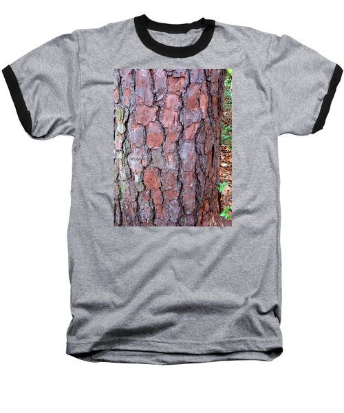 Colors And Patterns Of Pine Bark Baseball T-Shirt by Connie Fox