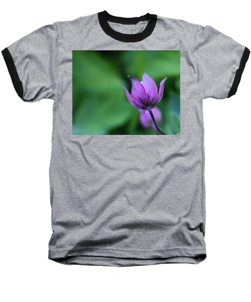 Columbine Flower Bud Baseball T-Shirt by Kathy Eickenberg