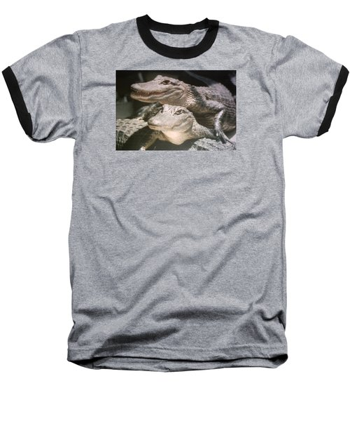 Baseball T-Shirt featuring the photograph Florida Alligators Come Closer by Belinda Lee