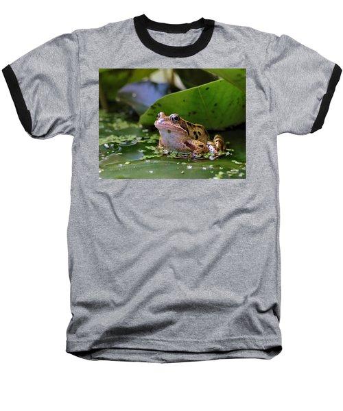 Common Frog Baseball T-Shirt by Ron Harpham