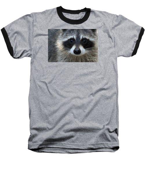 Common Raccoon Baseball T-Shirt