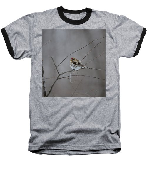 Baseball T-Shirt featuring the photograph Common Redpoll by David Porteus