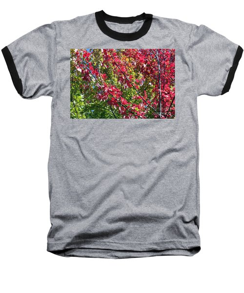 Baseball T-Shirt featuring the photograph Complimentary Colors by Debbie Hart