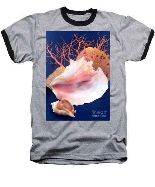 Conch Still Life Baseball T-Shirt by Barbie Corbett-Newmin