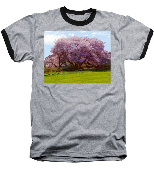 Concord Spring Baseball T-Shirt