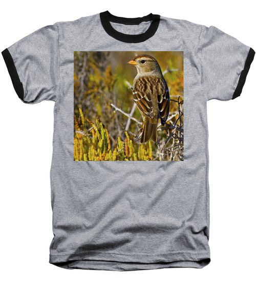 Baseball T-Shirt featuring the photograph Contemplating The Day by Gary Holmes
