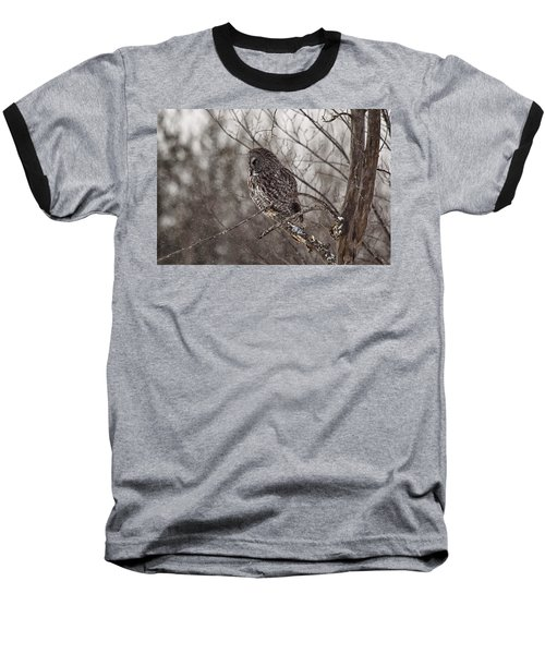 Contemplating Winter Baseball T-Shirt by Eunice Gibb