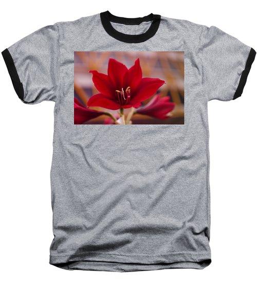 Content Tropics Baseball T-Shirt