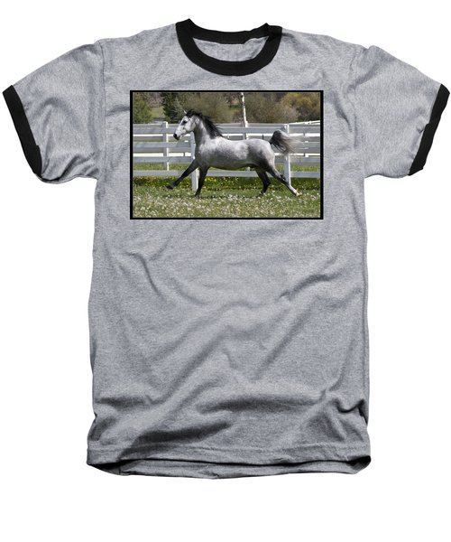 Conversano Catalina IIi Baseball T-Shirt by Wes and Dotty Weber