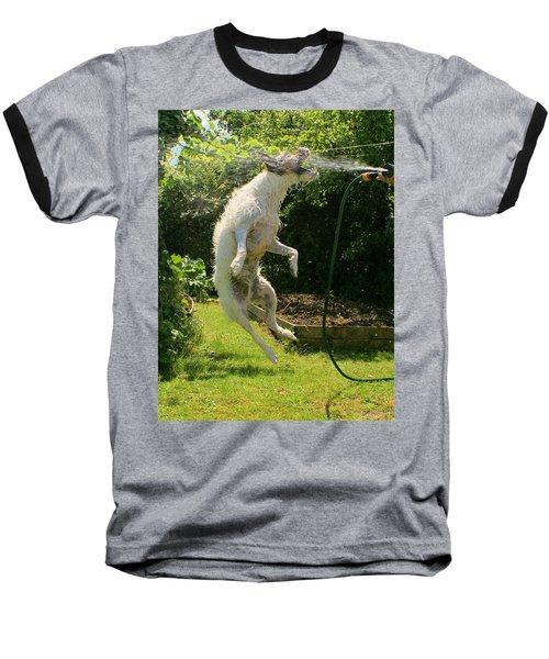 Cool Dog Baseball T-Shirt by Ron Harpham