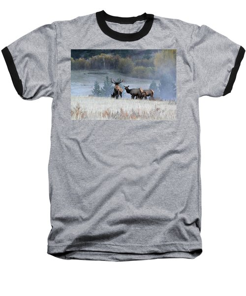 Cool Misty Morning Baseball T-Shirt