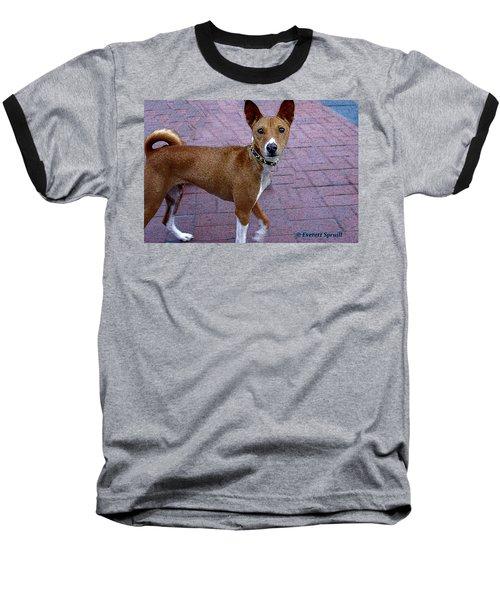 Basenji Baseball T-Shirt
