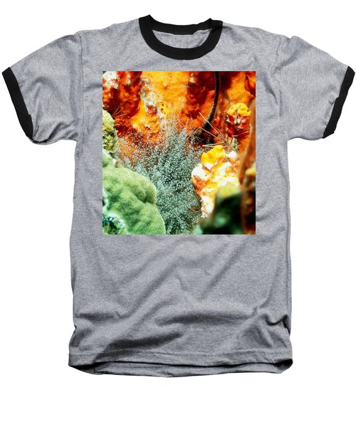 Baseball T-Shirt featuring the photograph Corkscrew Anemone Grove by Amy McDaniel