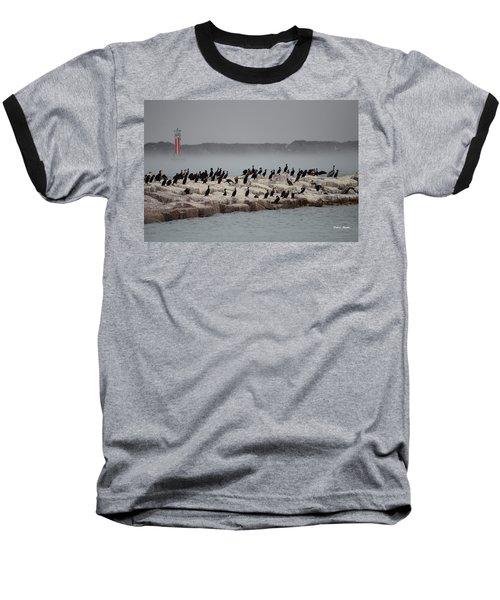 Baseball T-Shirt featuring the photograph Cormorant Island by Debra Martz