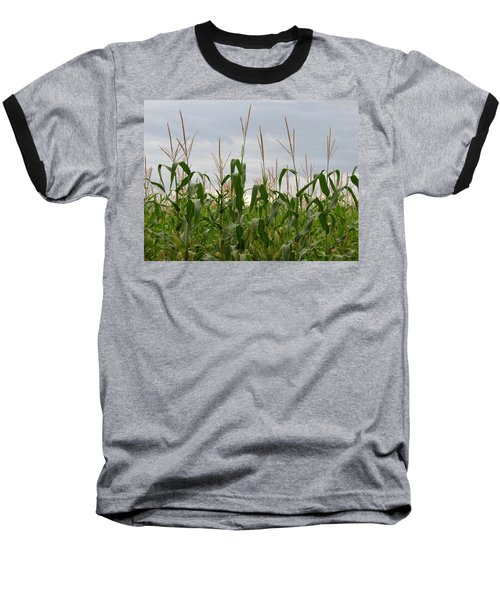 Baseball T-Shirt featuring the photograph Corn Field by Laurel Powell