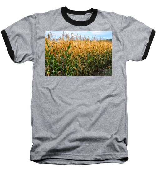 Baseball T-Shirt featuring the photograph Corn Harvest by Terri Gostola