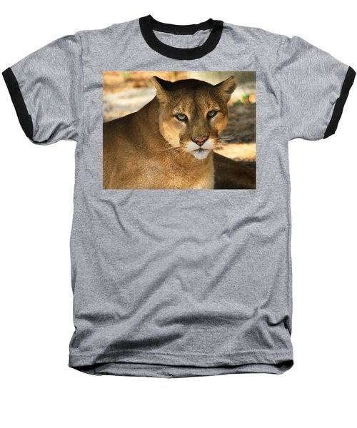 Cougar II Baseball T-Shirt