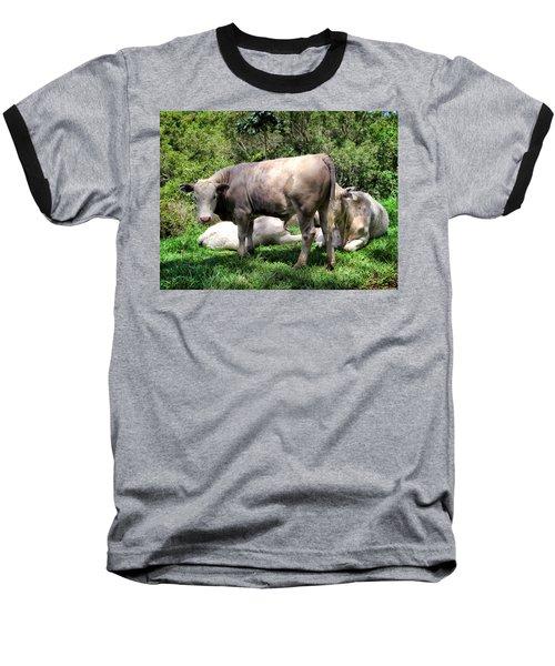 Baseball T-Shirt featuring the photograph Cow 5 by Dawn Eshelman