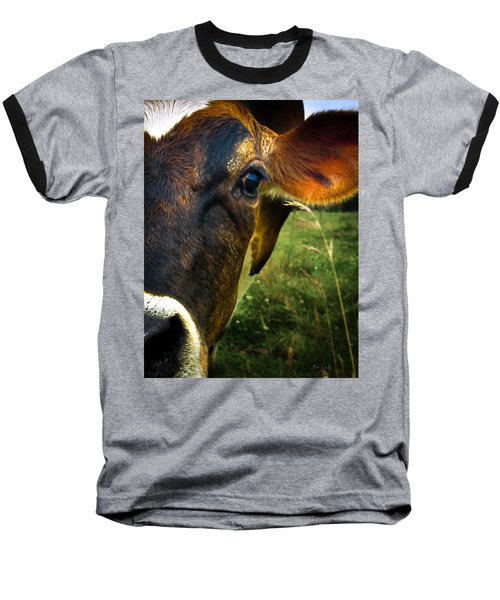 Cow Eating Grass Baseball T-Shirt