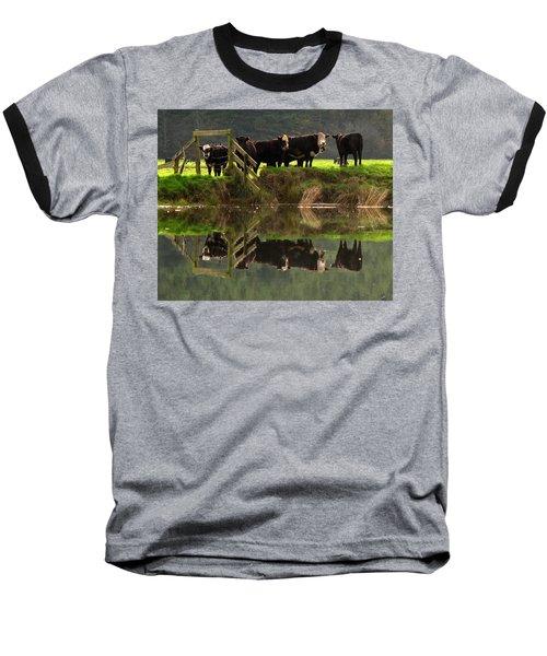 Cow Reflections Baseball T-Shirt