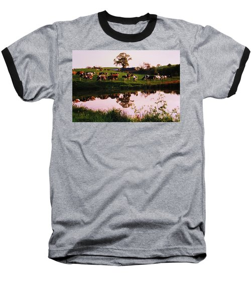 Cows In The Canal Baseball T-Shirt