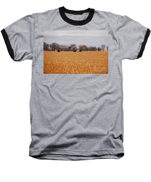 Baseball T-Shirt featuring the photograph Cows In The Corn by Mary Carol Story