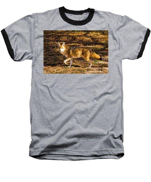 Coyote Baseball T-Shirt