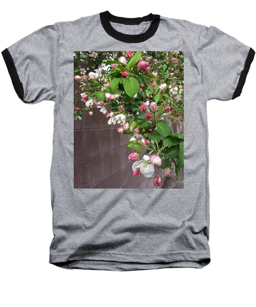 Crabapple Blossoms And Wall Baseball T-Shirt by Donald S Hall
