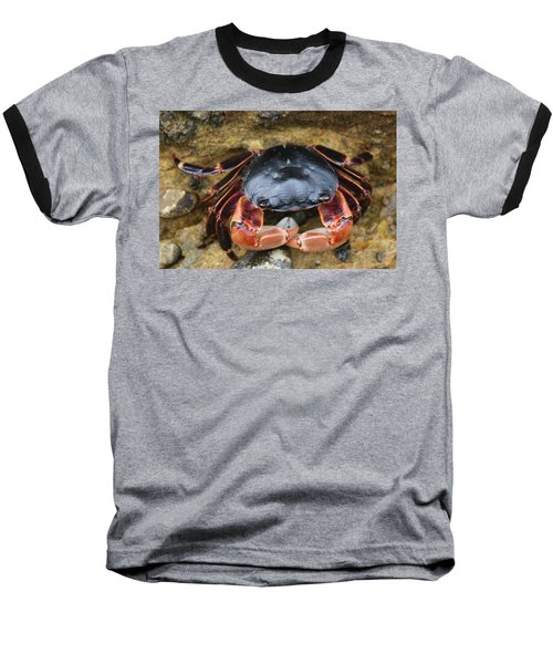 Crabby Pants  Baseball T-Shirt