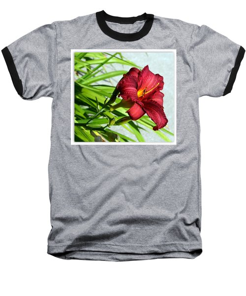 Cranberry Colored Lily Baseball T-Shirt by Kay Novy