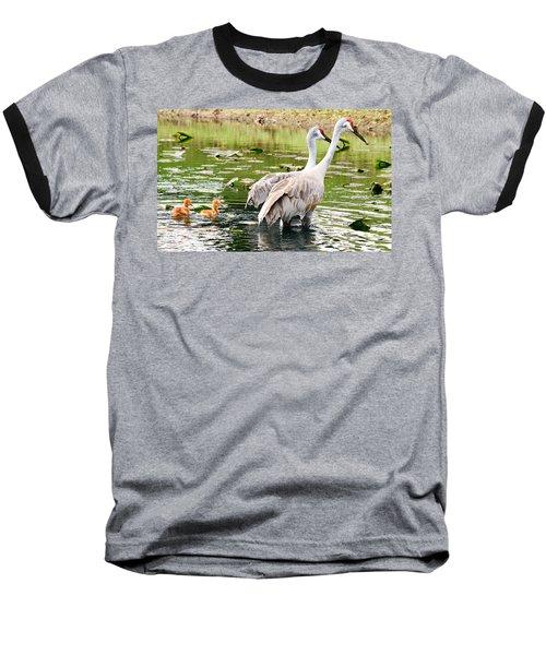 Crane Family Goes For A Swim Baseball T-Shirt by Susan Molnar