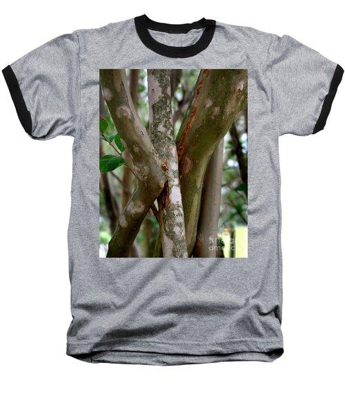 Crape Myrtle Branches Baseball T-Shirt by Peter Piatt