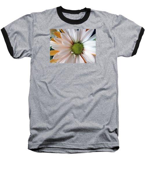 Baseball T-Shirt featuring the photograph Creamsicle by Jean OKeeffe Macro Abundance Art