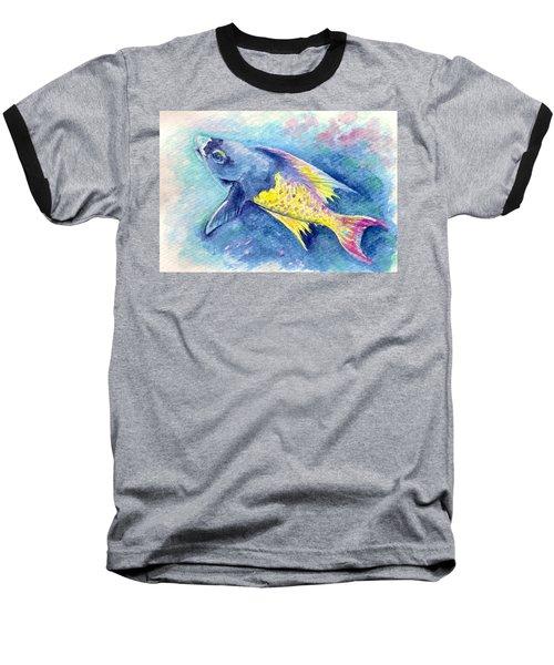 Creole Wrasse Baseball T-Shirt